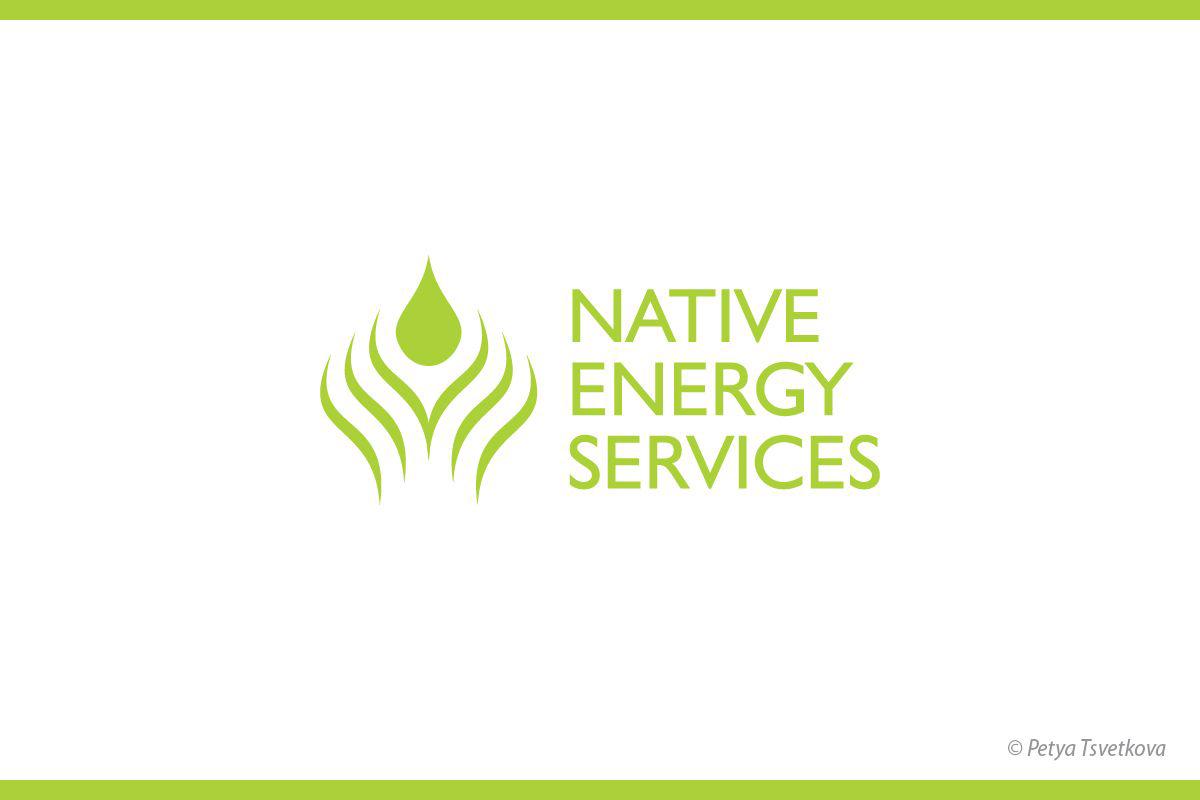 Logo_NES